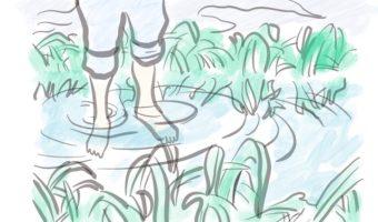 ホームケア・夏、シャンプー/アジュバン クールシャンプーで髪快適に!